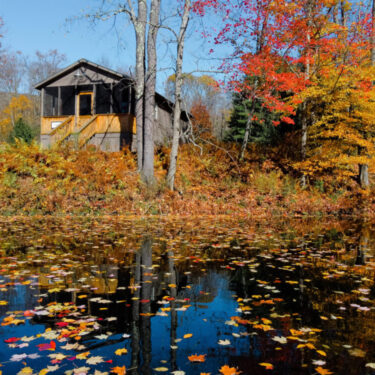 Pond View Cabin in Fall